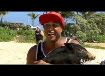 Introducing Kamapua'a The Surfing Pig | Ridiculous News