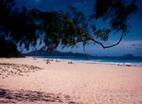 Sherwood Forest Beach