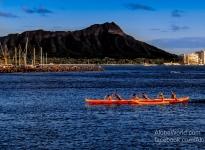 Waikiki Paddle