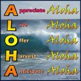 A-L-O-H-A