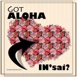 Got Aloha Insai