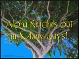 Aloha Reaches Out